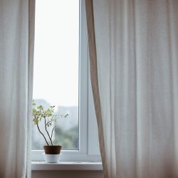 Best Window Treatments You Need to be Aware Of