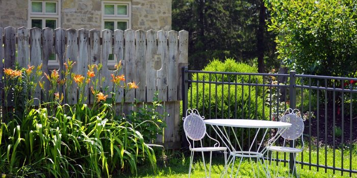 Simple Ways to Remove Unwanted Shrubs in Your Garden