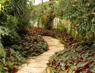 Add a New Look to Your Garden with Landscaping